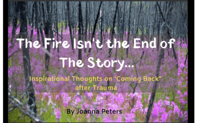 The Fire Isn't the End of the Story